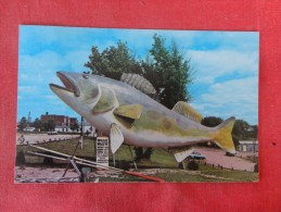 - Minnesota>Baudette  Willie Walleye welcome you to Lake of the oods--ref 1782