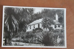 BERMUDES - Bermudes