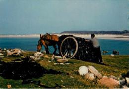 Bretagne - Pêche - Attelage De Chevaux - Poèmes - Récolte Du Goëmon - Poème - Roperh Er Mason - Lieu A Identifier - état - Bretagne
