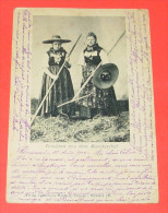 Trachten Aus Dem Münsterthal :::: Animation - Costumes - Tradition - Paysans - Carte Précurseur ----- 276 - Muenstertal
