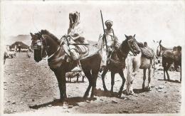 Scènes Et Types - Cavaliers Du Sud - Algérie