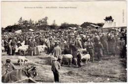 Environs De Périers - Millières : Foire Saint-Etienne ( Moutons )(état) - France