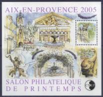Bloc CNEP 43 - Aix-en-Provence - Salon De Printemps (2005) Neuf** - CNEP