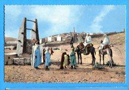 FR629, L'Afrique, La Halte Au Puits, 384, Chameau, Animée, Circulée 1968 Sous Enveloppe - Ghardaïa