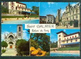 Cpsm Gf -  Saint Galmier - Balcon DU FOREZ   Rag36 - Autres Communes