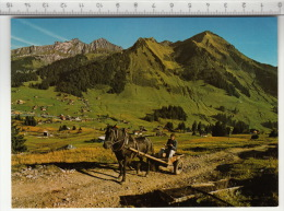 Col Des Mosses, Tornettaz, Pic Chaussy - Charette - VD Vaud