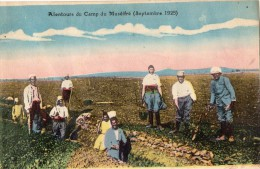 SYRIE ALENTOURS DU CAMP DU MUSEIFRE (SEPTEMBRE 1925) ANIMEE CARTE COLORISEE - Syrië