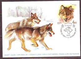 Estland 2004. Estonian Fauna. The Wolf. Maxikarte. - Estonia
