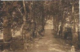 CPA De VILLAZ - Bon Attrait - Maison De Repos - L´Avenue. - Autres Communes