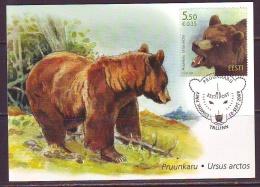 Estland 2009. Estonian Fauna – Brown Bear. Maxikarte. - Estonie