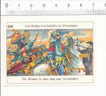 Image / Les Belges à La Bataille De Woeringen  / Histoire De Belgique Moyen-âge  / IM 166/4 - Autres
