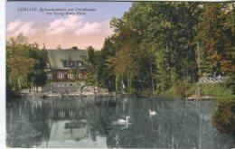 Unknown Postcard , Görlitz, Schwanenteich Mit Teichbaude Im Georg-Snay Park - Görlitz
