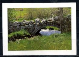 CHARMES DE LA MARGERIDE . Pont Gallo Romain .  Voir Recto - Verso    (T304) - Autres Communes