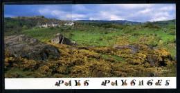 Photos Francis DEBAISIEUX .  Voir Recto - Verso    (T313) - Auvergne