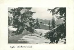 CPM - 74 - MEGEVE - Le Mont D'Arbois - Megève