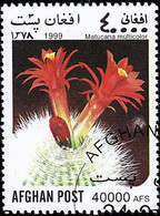 AFGHANISTAN - YW0100 Matucana Multicolor / Used Stamp - Cactusses