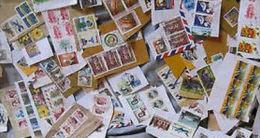 Asia KILOWARE MissionBag 250g (8½oz) Stamp Mixture       [vrac Kilowaar Kilovara] - Briefmarken
