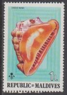 1975 - MALDIVES - Y&T 511 - Cassis Nana (MNH/**) - Maldives (1965-...)