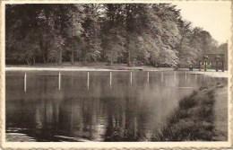Brasschaat: Park- Roei En Zwemvijver - Brasschaat
