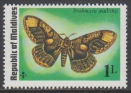 1975 - MALDIVES - Y&T 557 - Brahmaea Wallichii (MNH/**) - Maldives (1965-...)