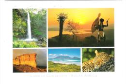 South Africa - Land Of Contrasts - Nice Animal Stamp - Südafrika
