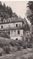 CPSM  -   ISLES SUR LE DOUBS - LE CHATEAU  - DOUBS 25 - Isle Sur Le Doubs