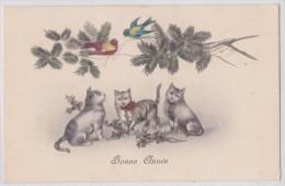 Trio De Chats - Chat Gris - Oiseaux - Gui - Houx - H.H.i.W. Nr. 965 - Katzen