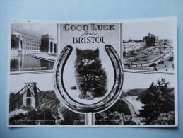 Good Luck From Bristol - Bristol