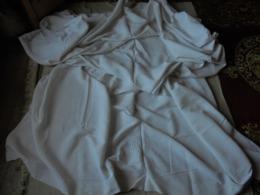 Ancien - Grand Drap Blanc (2 Pans Réunis) Monogramme DS - Bed Sheets