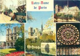 CPM - 75 - Notre-Dame De PARIS - Notre Dame De Paris