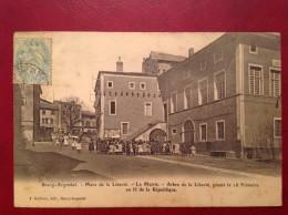 42 Loire BOURG ARGENTAL Place Et Arbre De La Liberté Mairie - Bourg Argental