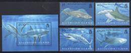 ASCENSION. 2008 SHARKS SET & SOUVENIR SHEET MNH. - Ascensione