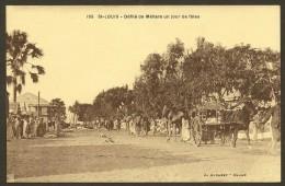 SAINT LOUIS Défilé De Méhara Un Jour De Fêtes (Albaret) SENEGAL Afrique - Sénégal