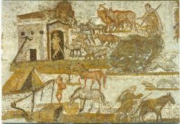 Mosaique Exploitation Rurale IIIe S.ap.J.C Villa Dite Des Laberii (Oudhna) - Tunisia