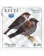Ref. 89312 * MNH * - ESTONIA. 2002. BIRDS . AVES - Estland