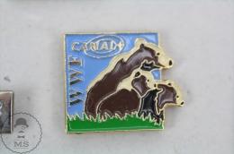 WWF World Wide Fund For Nature Channal -  Pin Badge #PLS - Medios De Comunicación