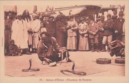 Tunisia Charmeur de Serpents Snake Charmer