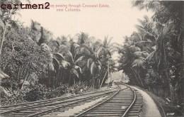 COLOMBO SRI-LANKA CEYLON SEA SIDE RAILWAY PASSING THROUGH COCOANUT ESTATE INDIA - Sri Lanka (Ceylon)