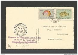 MOZAMBIQUE - Tananarive - Madagascar - 1953