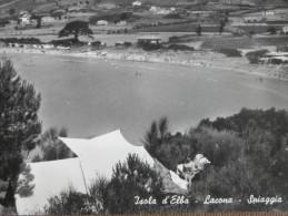 ISOLA  D´ELBA   -- LACONA -SPIAGGIA --  --BELLA - Italia