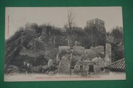 Viriville Illustres Ruines Du Chateau Des Seigneurs De Grolée - Viriville