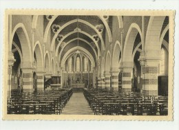 Muizen   *  St. Albertus Kerk - Binnenzicht 1909-1934 - Malines