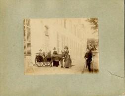 Chateau De Millemont (78) - Attelage Enfants Ane - Lieux