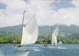 Tahitian Outrigger Canoe Race Vaa Taie Paumotu - Tahiti