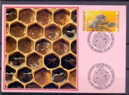 België - Natuur - Studiegroep Postzegels A. Buzin - Deurne 30/8/1997  (RM8576) - Abeilles
