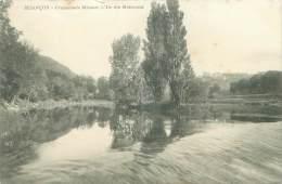 25 - BESANCON - Promenade Micaud, L'Ilde Des Moineaux - Besancon