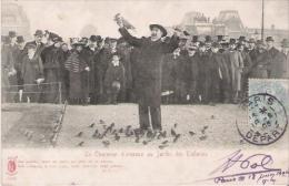 LE CHARMEUR D'OISEAUX AU JARDIN DES TUILERIES 3588       1905 - Petits Métiers à Paris