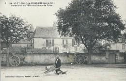 SAINT - ETIENNE De MONT - LUC  ( 44 ) - Partie Sud Du Pâtis Ou Champ De Foire - Saint Etienne De Montluc
