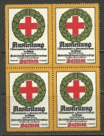 Deutschland Reklamemarke 1915 Ausstellung Verwundeten - Und Krankenfürsorge Darmen 4-Block MNH - Cinderellas