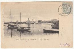 CP 5c Blanc O. Arzew Oran 1905 -> Saint Pétersbourg (Russie)  Belle Destination (2 Scans) - Marcophilie (Lettres)